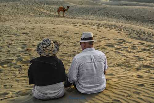 """""""Are you in the Desert? Then be camel! Be compatible with the reality!"""""""